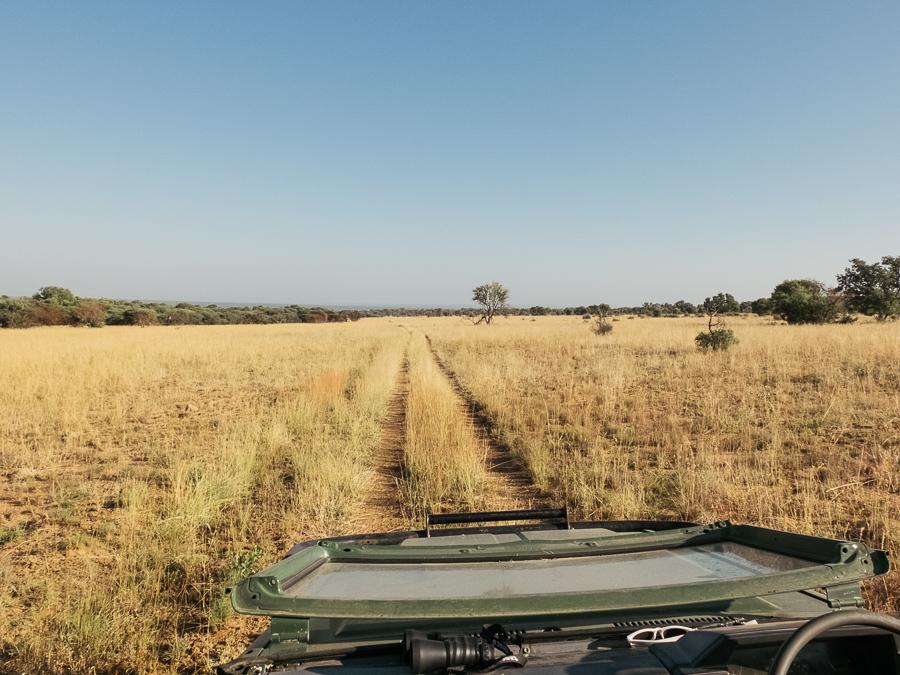 Mziki Safari-5